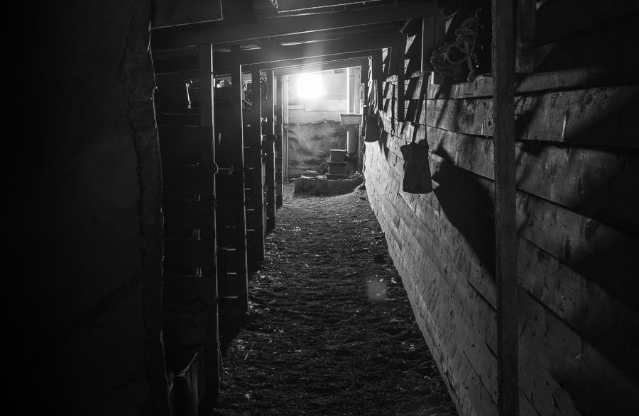 Pony Stalls