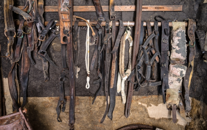 Shackleton's pony's tack.