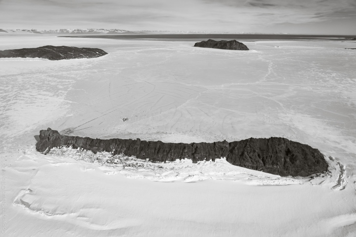 Big Razorback Island, site of a large seal colony and a science field camp to study the seals.